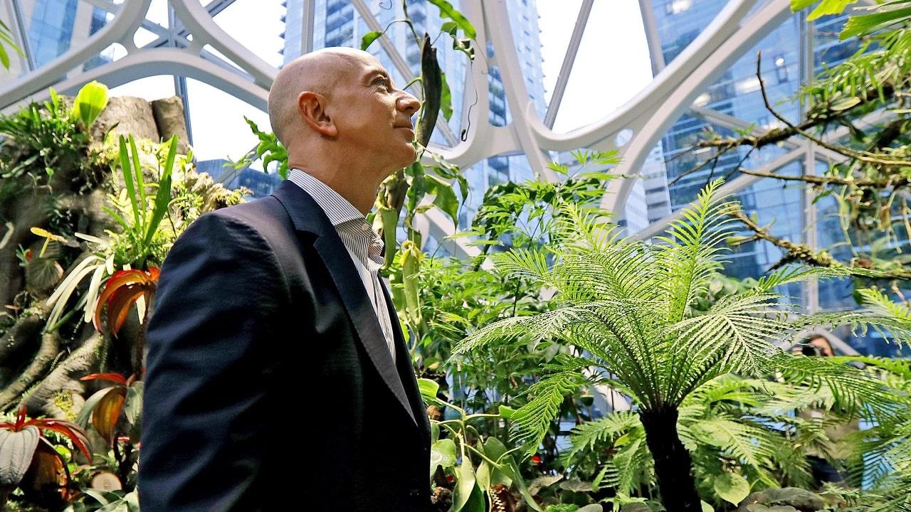 Jeff Bezos annuncia i primi beneficiari del fondo da 10 miliardi per l'ambiente thumbnail