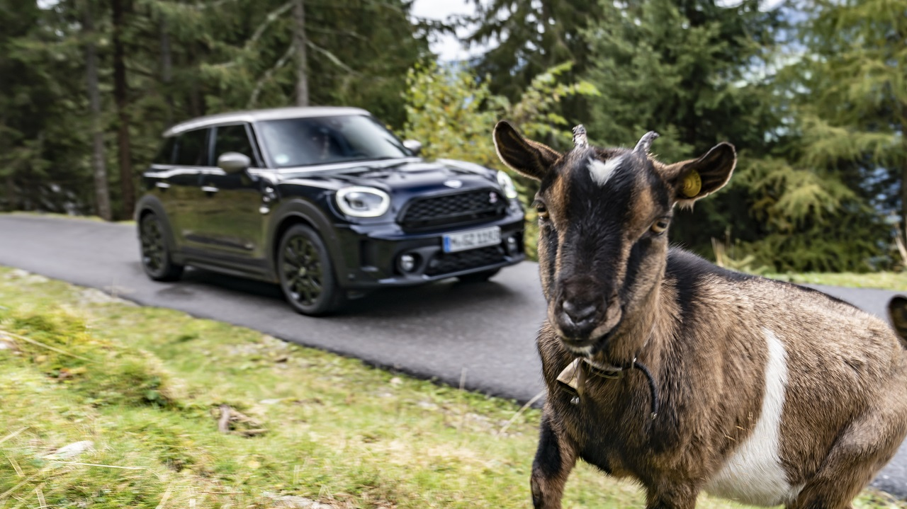 MINI Cooper SD Countryman ALL4: ideale per un viaggio in Alto Adige thumbnail