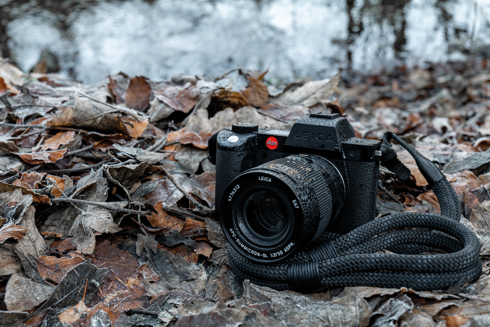Leica SL2-S: la mirrorless versatile made in Germany thumbnail