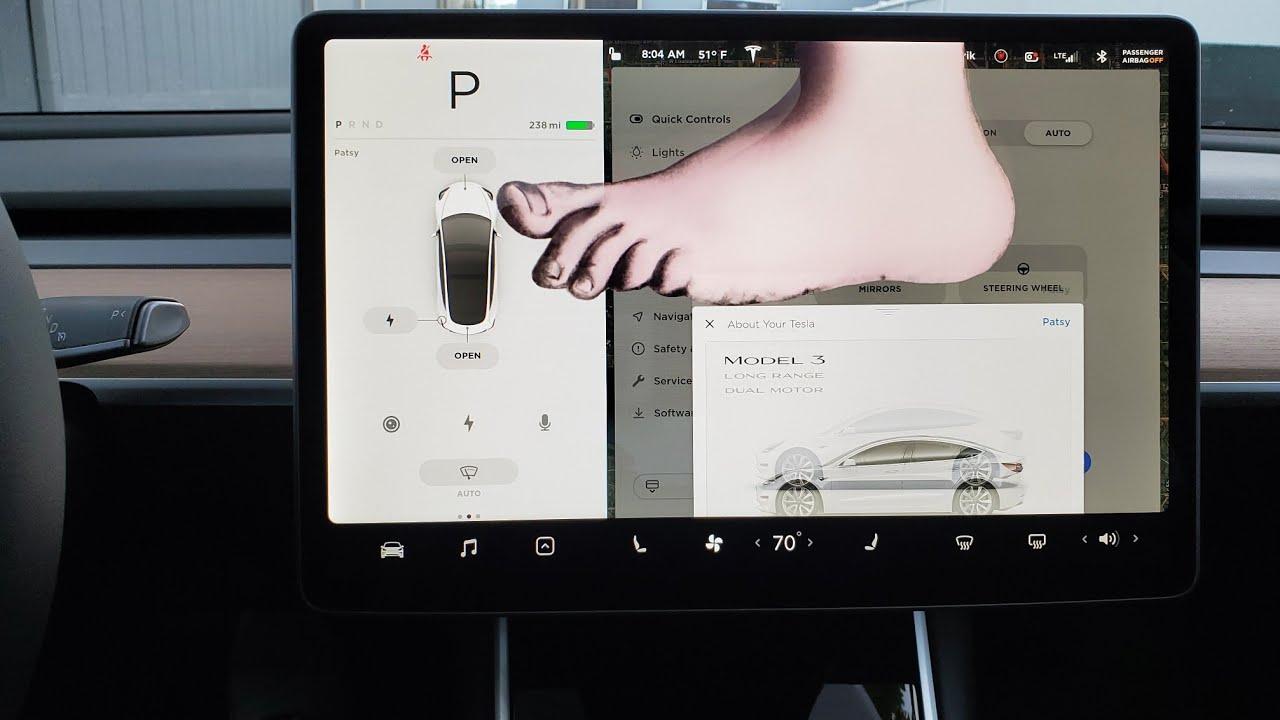 Tesla Patsy