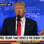 Social e libertà di espressione fake news