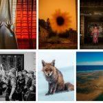 Ecco i finalisti Sony World Photography Awards 2021