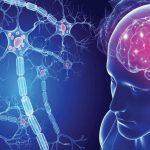 Sclerosi brainteaser
