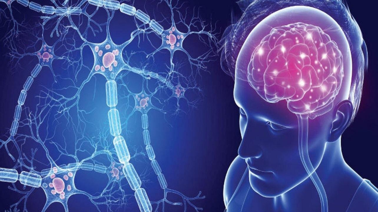 Brainteaser è il nuovo progetto per combattere la sclerosi con l'innovazione thumbnail