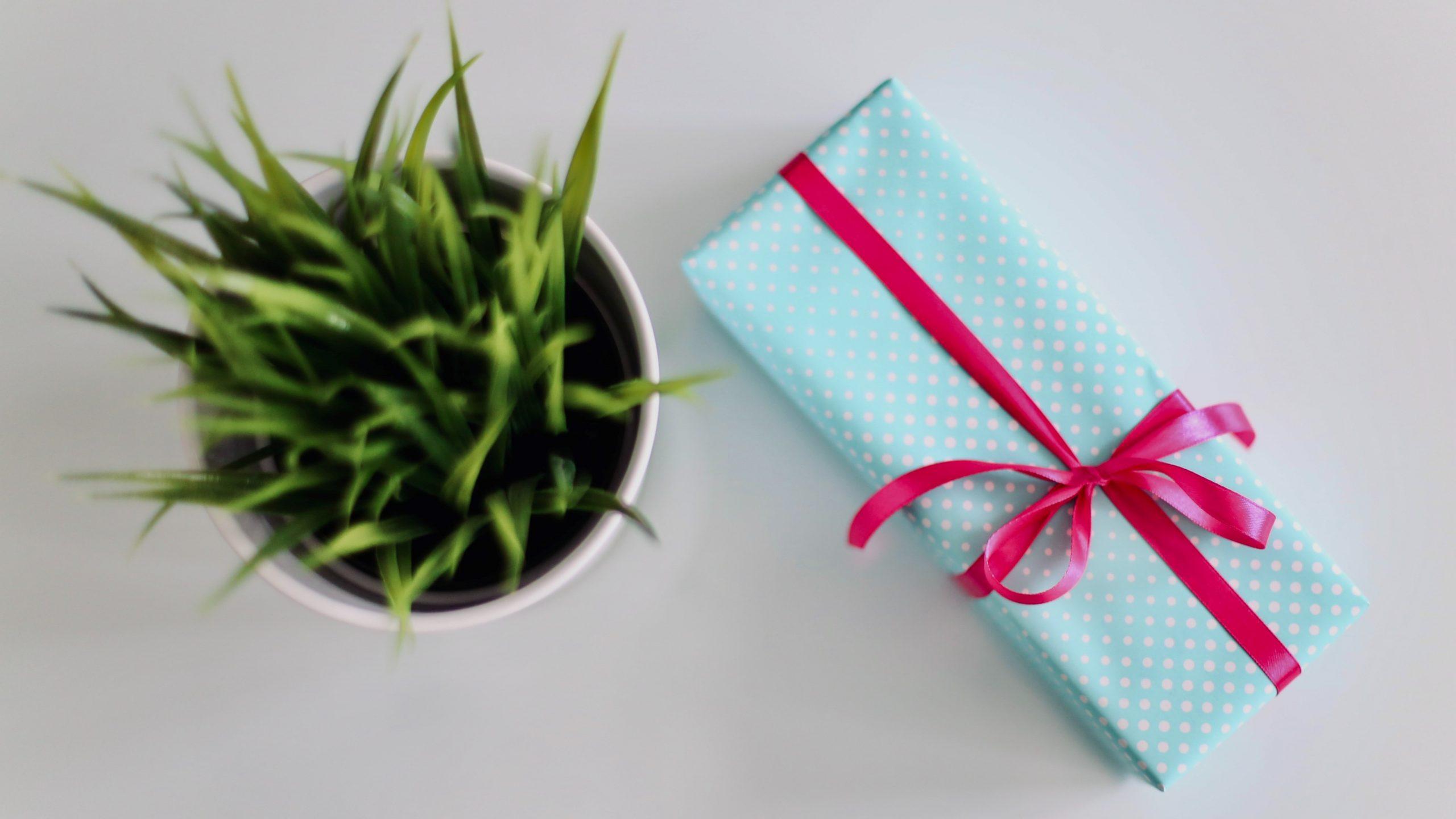 10 regali divertenti ed economici per la Festa della Donna thumbnail
