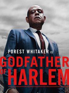 Godfather of harlem disney star