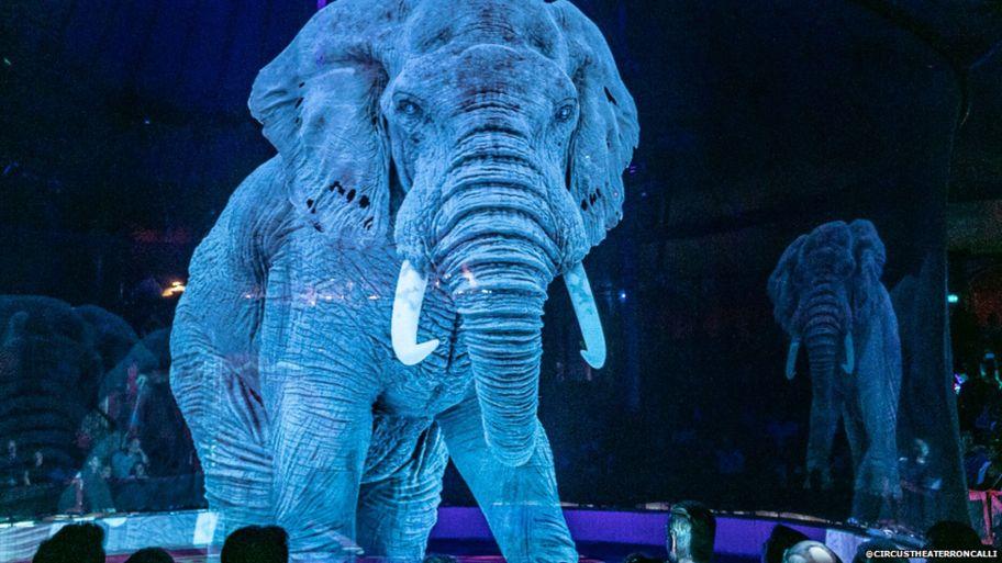 ologrammi 3d animali circo