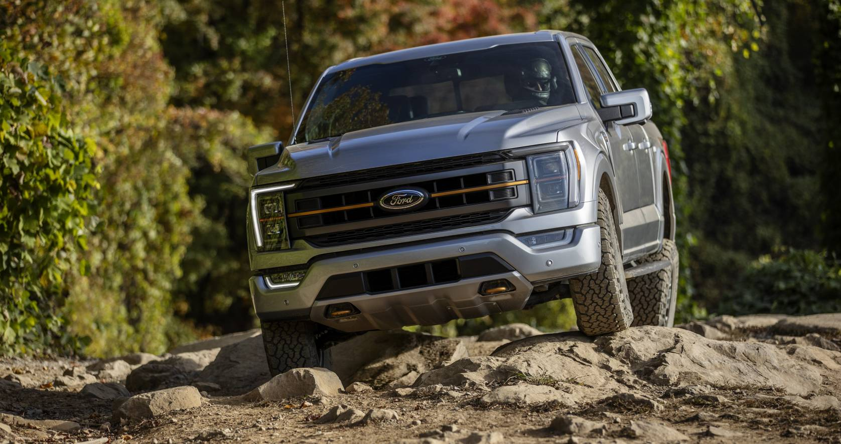 Pick-up Ford F-150