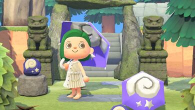 aggiornamento Animal Crossing