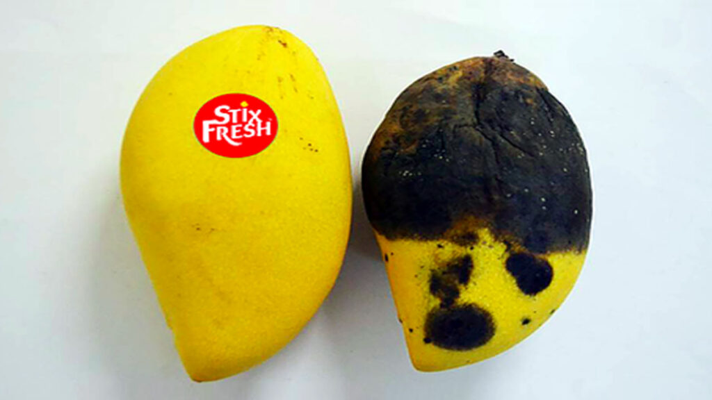 bollino frutta Stix Fresh