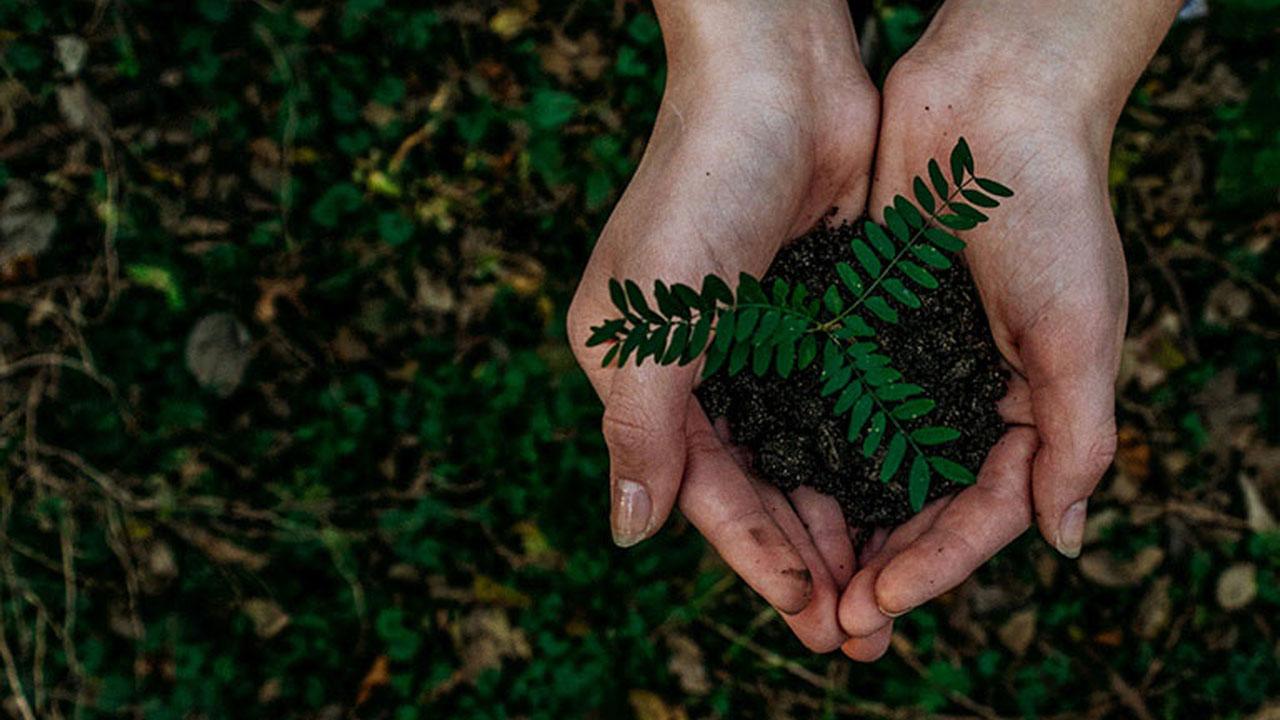 Il futuro di Razer è green e sostenibile thumbnail