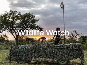 samsung wildlife watch