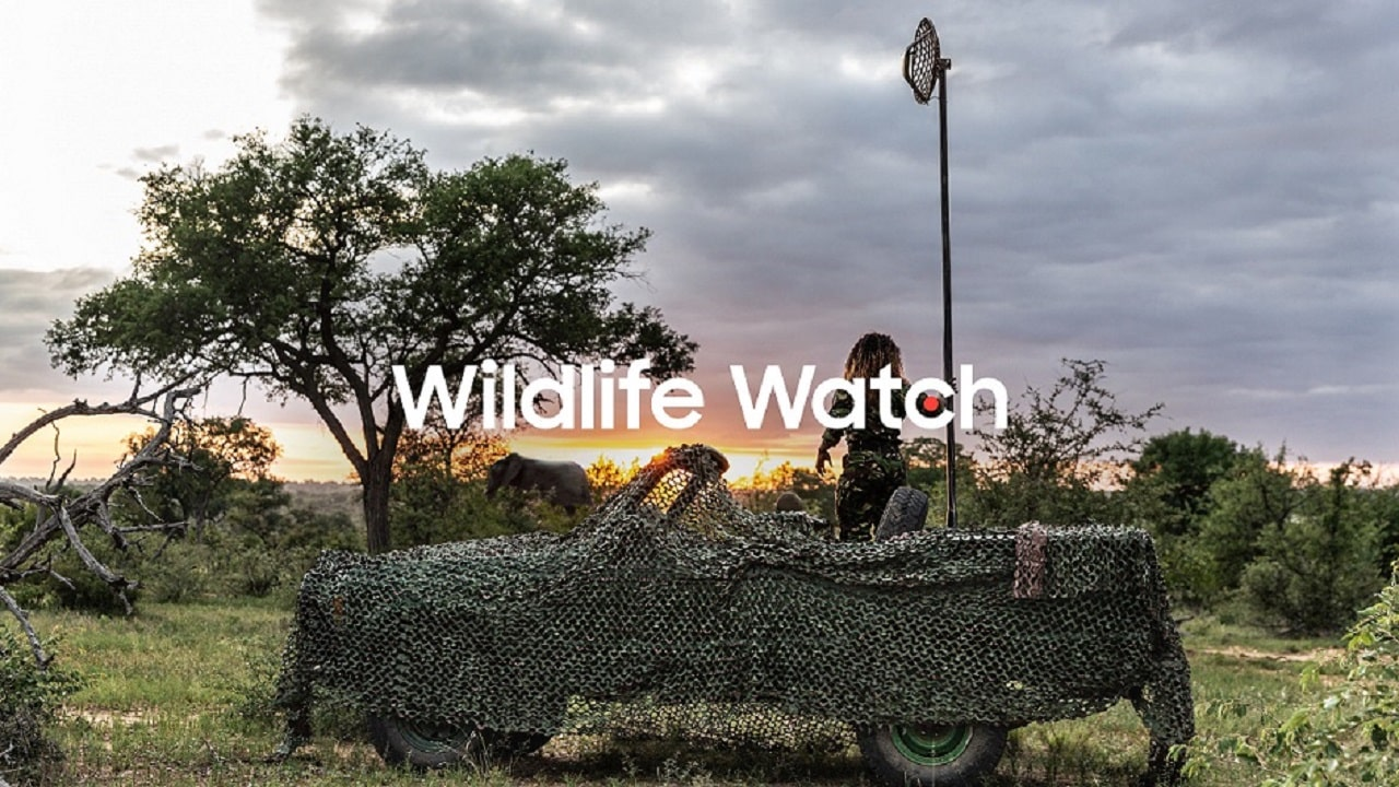 Samsung Wildlife Watch vi trasforma in ranger virtuali thumbnail