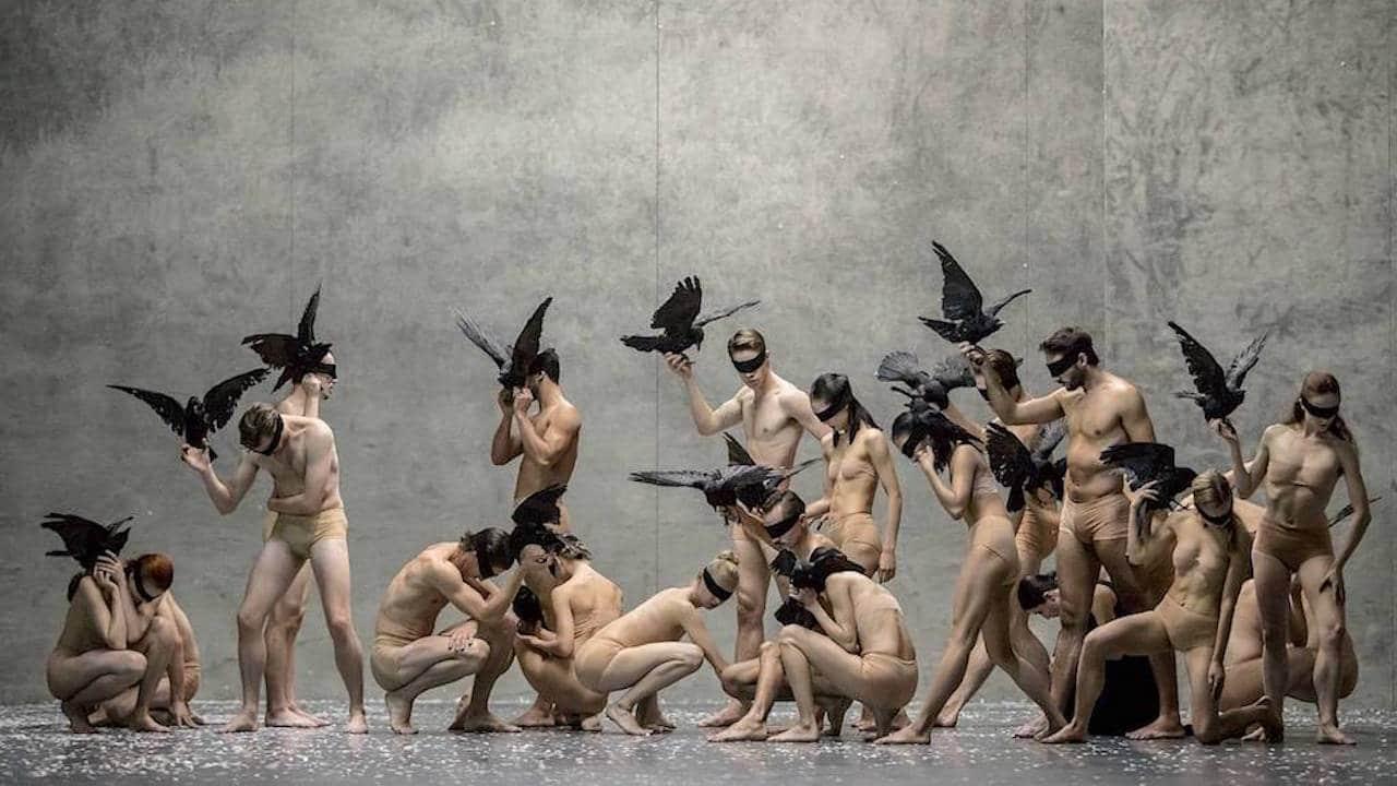 5 spettacoli gratuiti sulla danza da guardare su Arte TV thumbnail