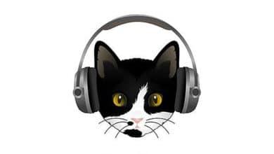 roger podcast palinsesto 2021
