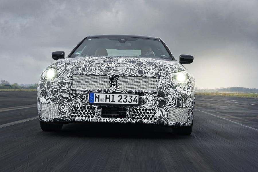 BMW Serie 2 Coupé mascherina