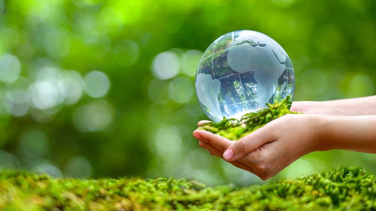 Giornata Mondiale dell'Ambiente 2021: 10 prodotti green per una vita più sostenibile thumbnail
