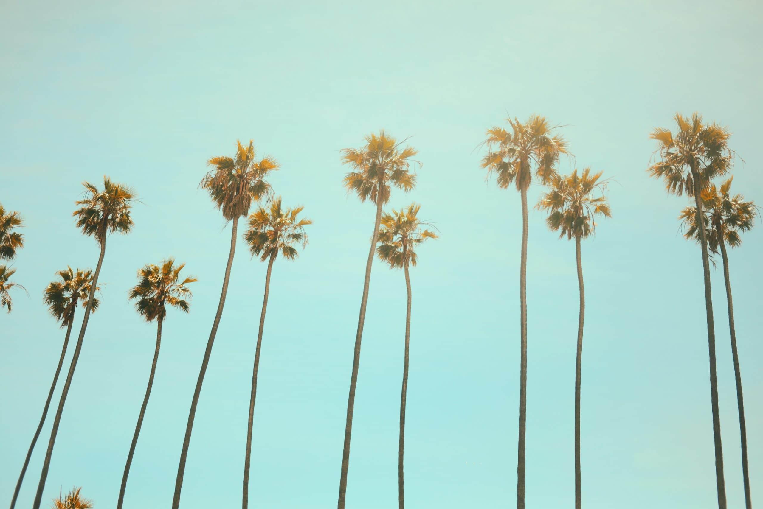 Dove andare in vacanza quest'estate? Ecco qualche località di mare thumbnail