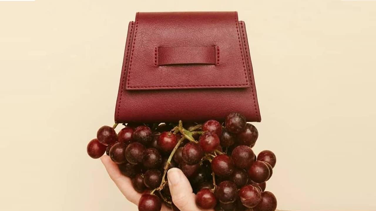 Wineleather, la pelle vegetale creata dagli scarti del vino thumbnail