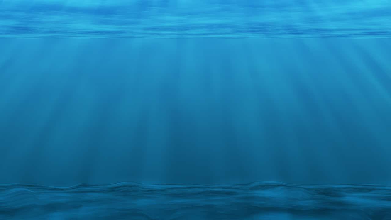 Oggi è la giornata mondiale degli oceani thumbnail