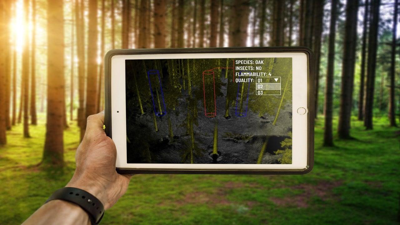 Outsight è la prima tecnologia LiDAR che mappa in tempo reale le foreste thumbnail