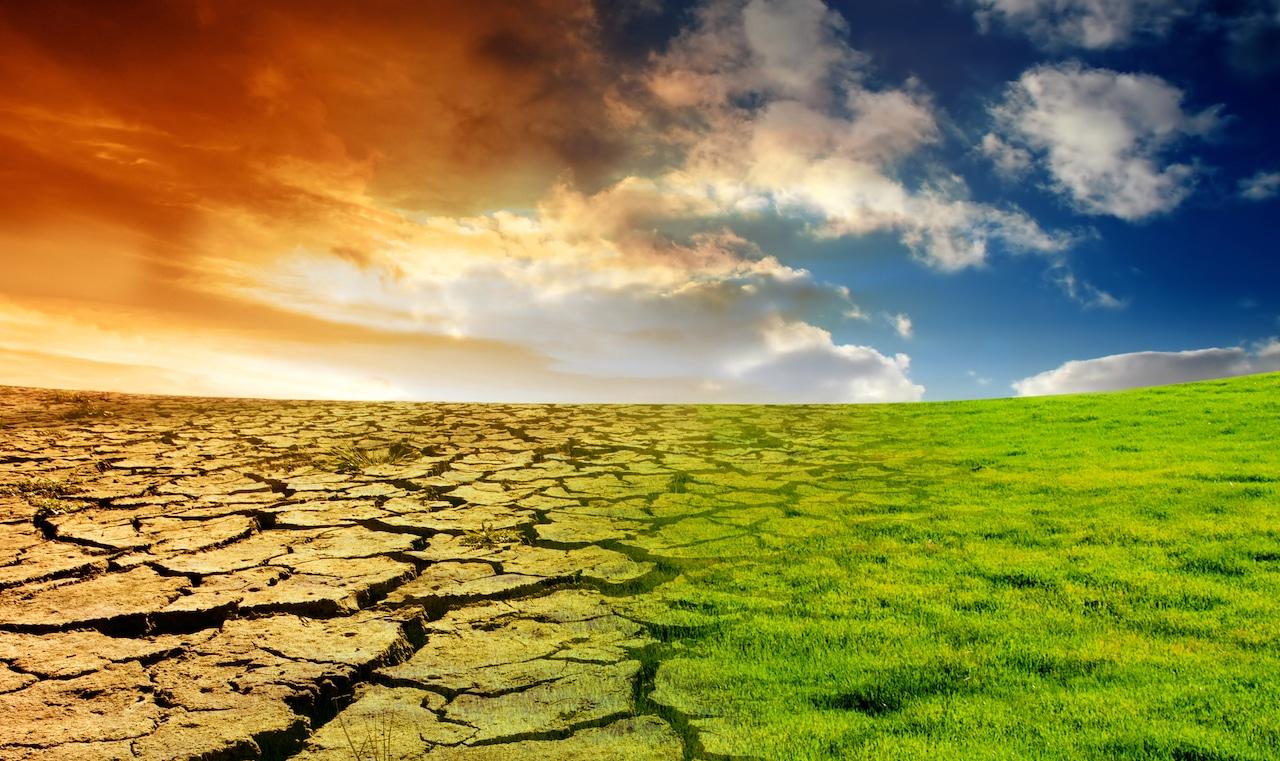 Cambiamento climatico: il Canada ci dà un'anteprima del nostro futuro thumbnail