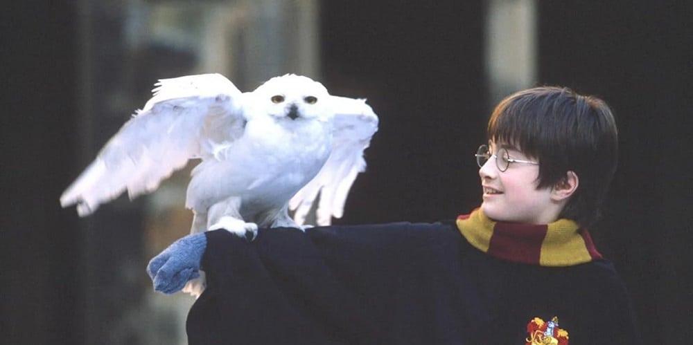 Harry-Potter-pellicola-tech-princess