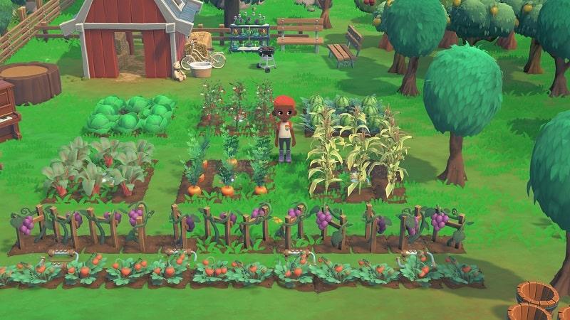 HokkoLife farming update aggiornamento-min