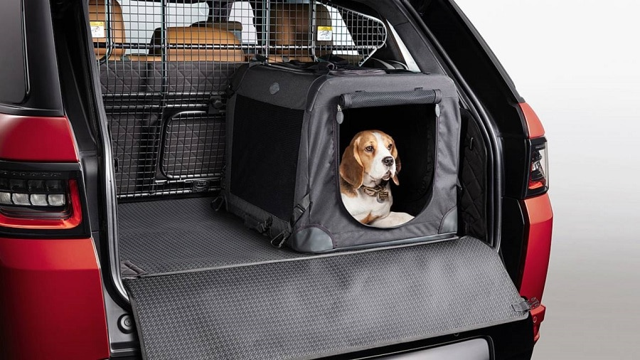 cani in auto kennel