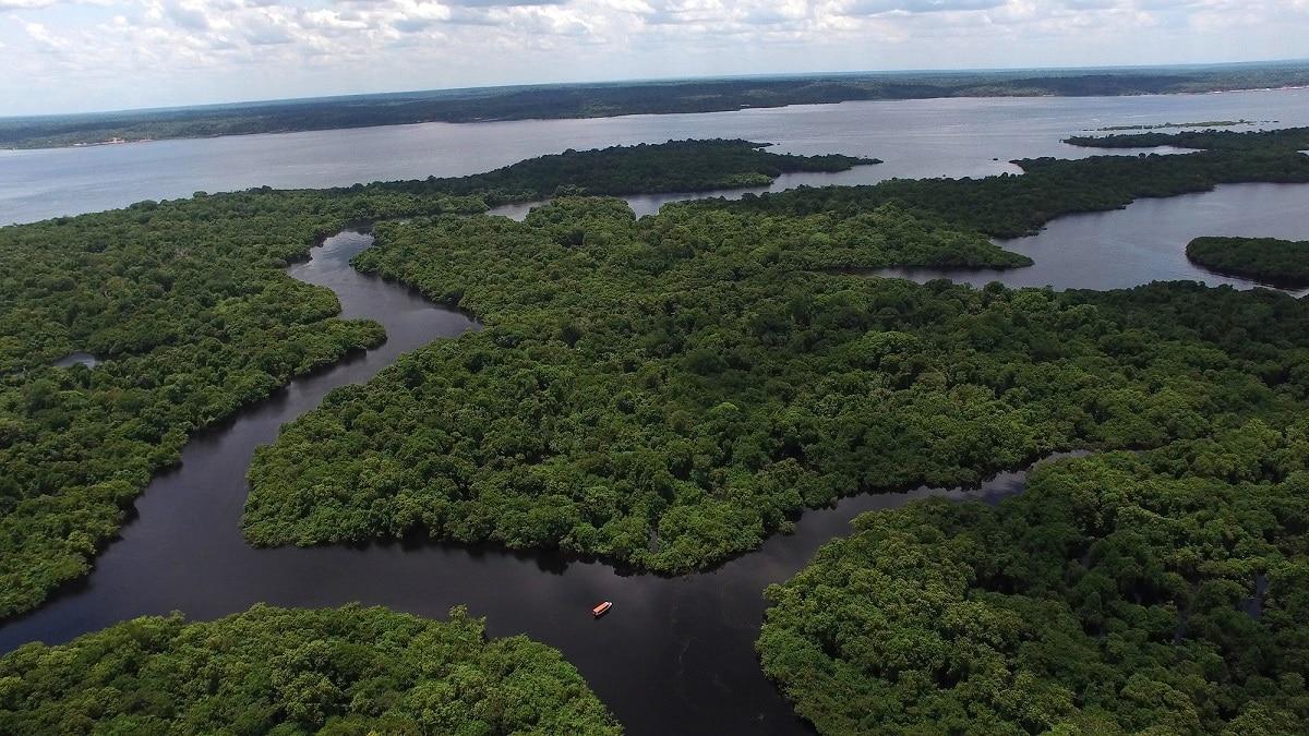 L'Amazzonia emette più CO2 di quanta ne assorbe thumbnail