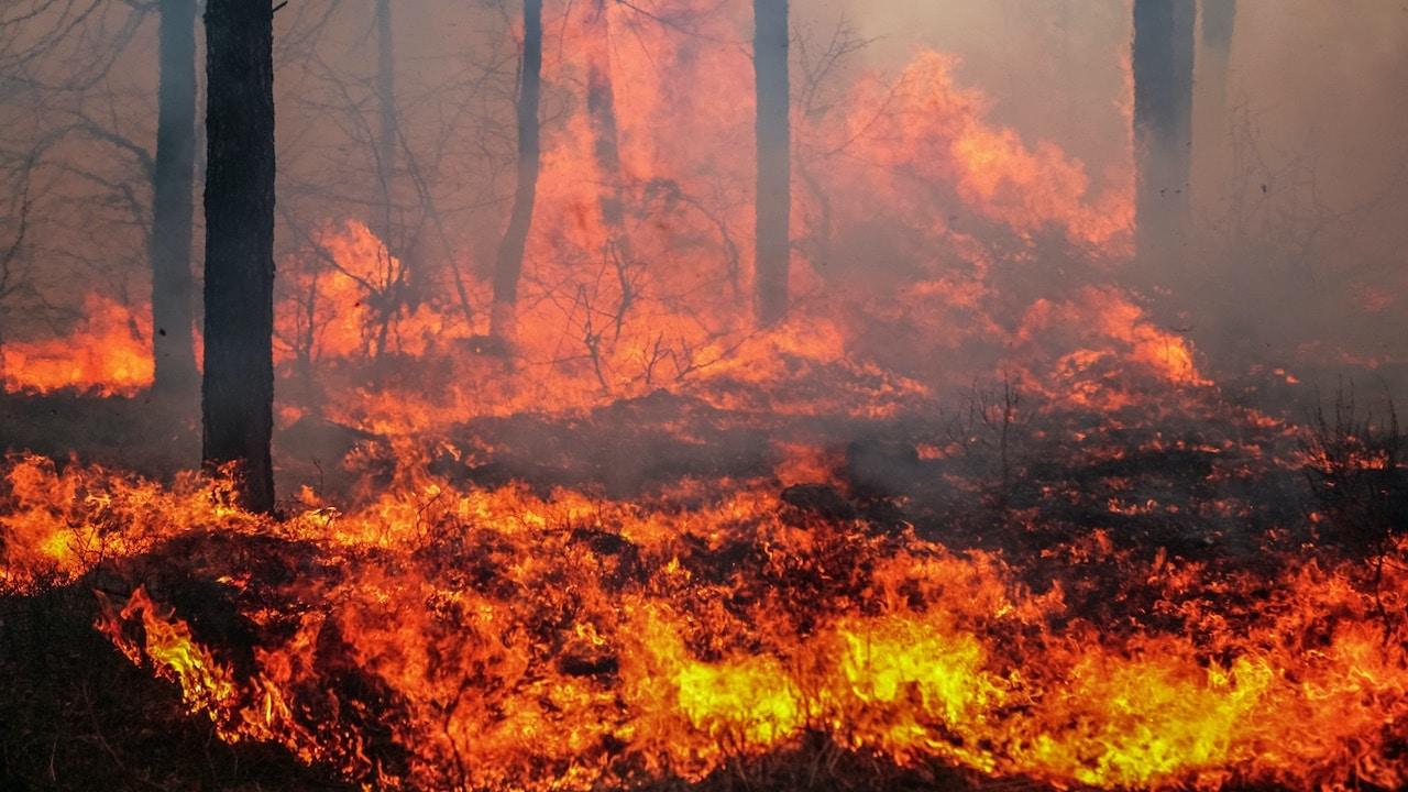 Sardegna: la provincia di Oristano avvolta dagli incendi thumbnail