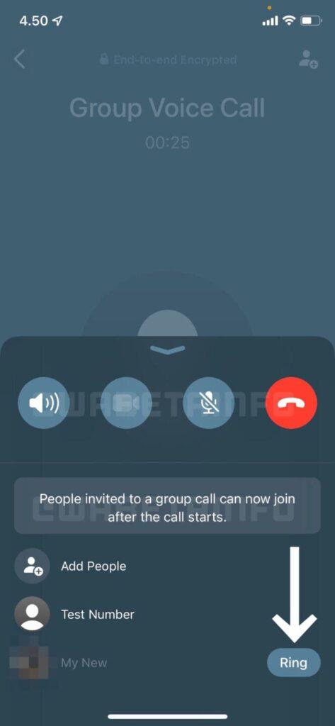 whatsapp chiamate di gruppo novità in arrivo beta-min