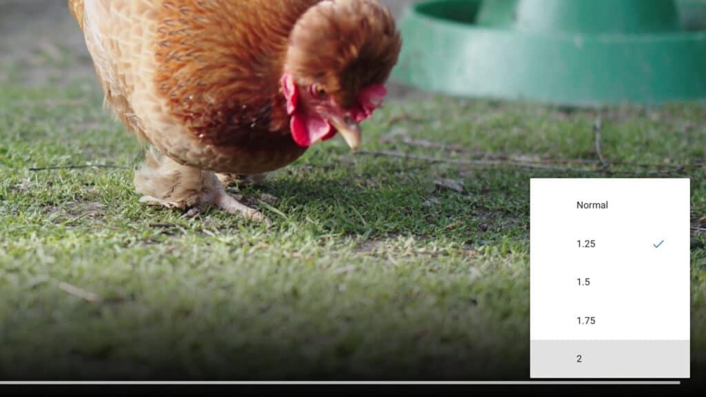 Chrome OS 93 novità - riproduzione video