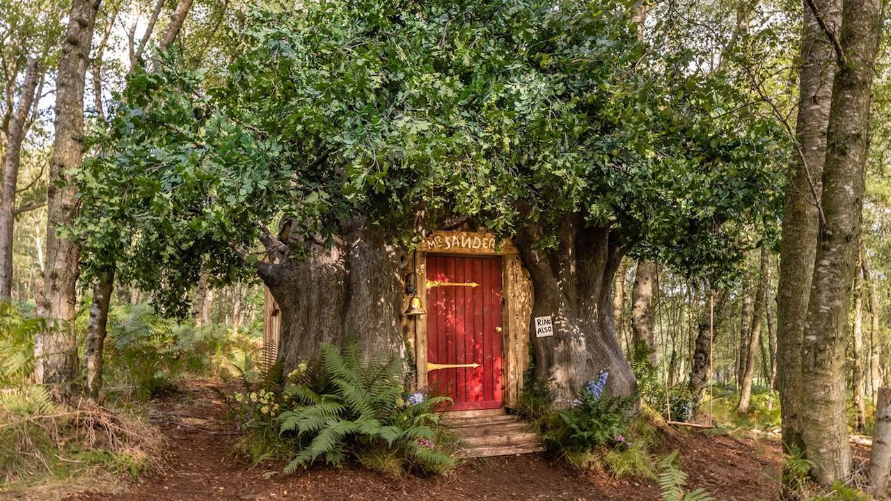 Su Airbnb arriva la Casa di Winnie Pooh thumbnail