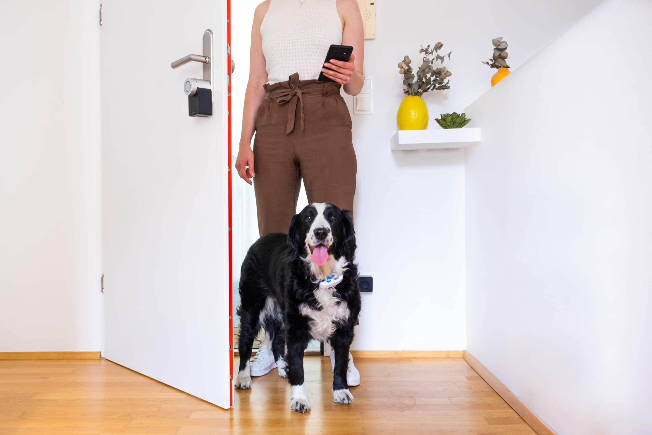 Le nuove serrature Nuki perfette per chi ha animali in casa thumbnail