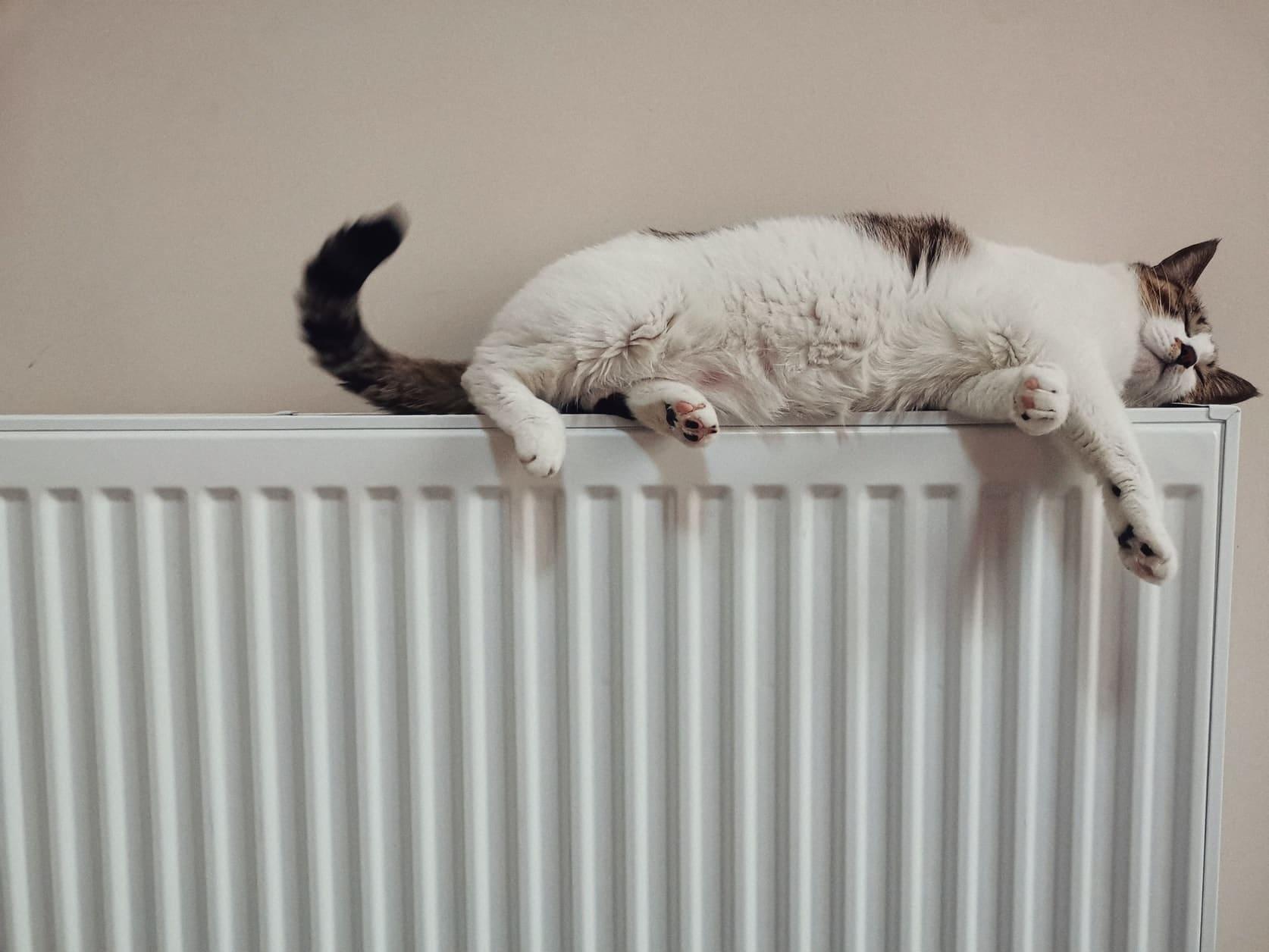 I consigli per risparmiare su gas e riscaldamento in vista del caro bollette thumbnail