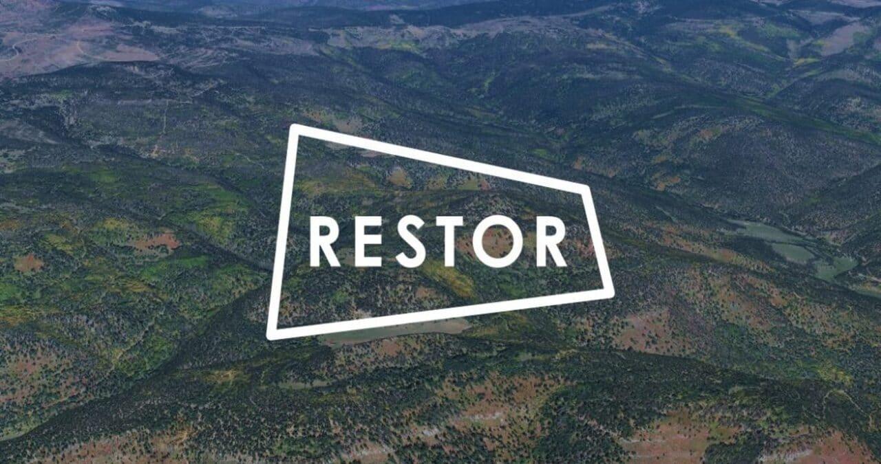 Nasce il progetto Google Restor per la salvaguardia dell'ambiente thumbnail